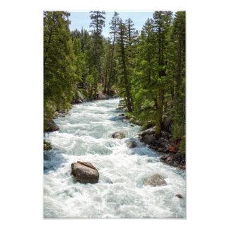 Río en el bosque impresion fotografica