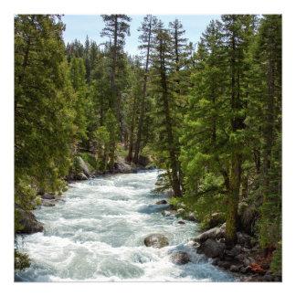 Río en el bosque arte fotografico