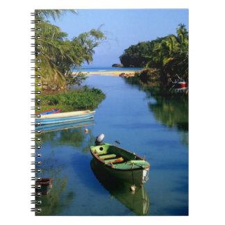 Río escénico cerca de Ocho Rios en Jamaica Cuadernos