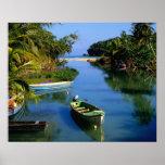 Río escénico cerca de Ocho Rios en Jamaica Póster