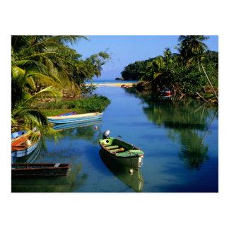 Río escénico cerca de Ocho Rios en Jamaica Tarjetas Postales