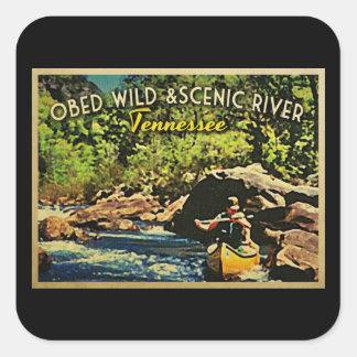 Río escénico salvaje Tennessee de Obed Colcomanias Cuadradases