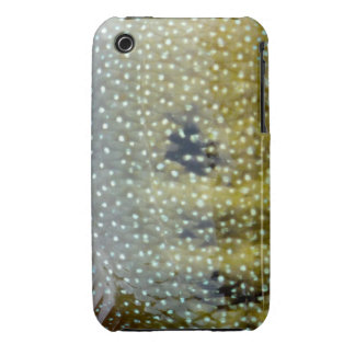Rio Grande Cichlid Iphone 3G/3GS Cover iPhone 3 Cases