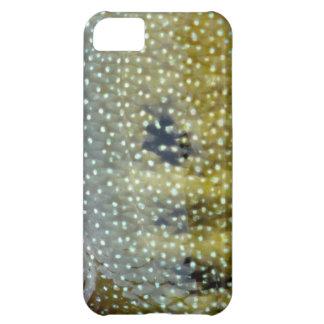 Rio Grande Cichlid Iphone 5 Cover