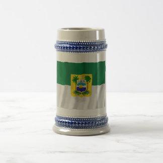 Rio Grande do Norte, Brazil Waving Flag 18 Oz Beer Stein