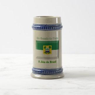 Rio Grande do Norte Flag Gem 18 Oz Beer Stein