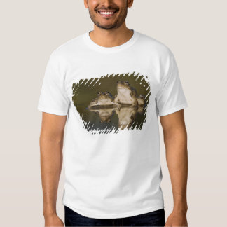 Rio Grande Leopard Frog, Rana berlandieri, two T-Shirt