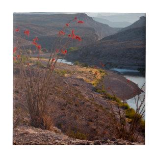 Rio Grande que corre a través del desierto de Tejas