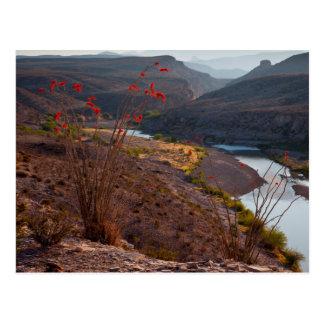 Rio Grande que corre a través del desierto de Postales