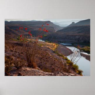 Rio Grande que corre a través del desierto de Póster
