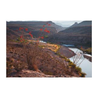 Rio Grande Running Through Chihuahuan Desert Canvas Print