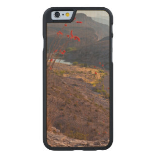Rio Grande Running Through Chihuahuan Desert Carved Maple iPhone 6 Case