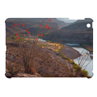 Rio Grande Running Through Chihuahuan Desert Case For The iPad Mini