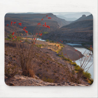 Rio Grande Running Through Chihuahuan Desert Mouse Pad