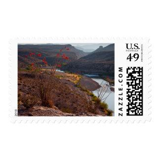 Rio Grande Running Through Chihuahuan Desert Postage Stamp