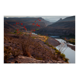 Rio Grande Running Through Chihuahuan Desert Poster