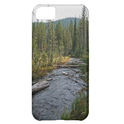 Río hermoso Oregon de Deschutes
