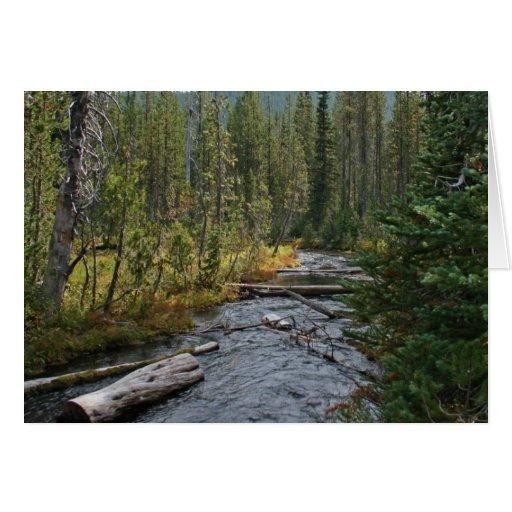 Río hermoso Oregon de Deschutes Tarjeta De Felicitación