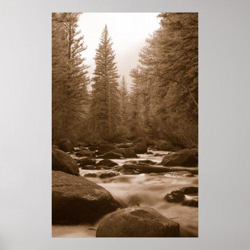 río infrarrojo en Parque Nacional de las Montañas  Posters