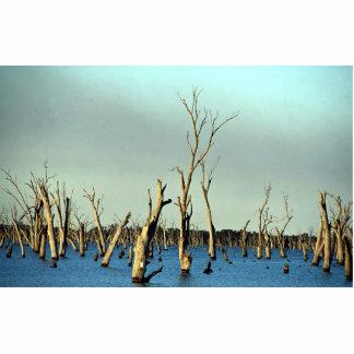 Río inundado Murray para la irrigación, Australia Escultura Fotográfica