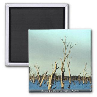 Río inundado Murray para la irrigación, Australia Imanes De Nevera