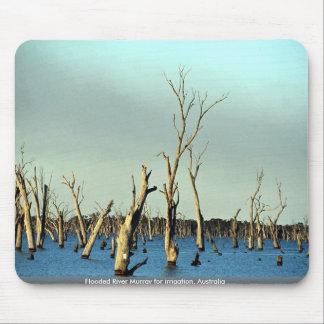 Río inundado Murray para la irrigación, Australia Tapetes De Ratón