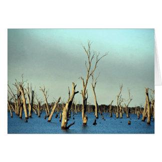 Río inundado Murray para la irrigación, Australia Tarjetón