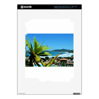 Rio iPad 3 Skins