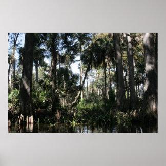 Río la Florida del sur de Loxahatchee Poster