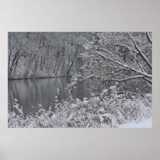 río nevado poster