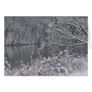 río nevado tarjeta