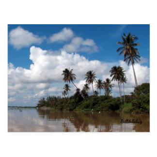 Rio Papaloapan, Veracruz Postcard