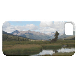 Río perezoso iPhone 5 funda