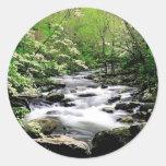 Río Prongdogwoods medio Tennesse ahumado Etiquetas Redondas
