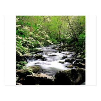 Río Prongdogwoods medio Tennesse ahumado Tarjetas Postales