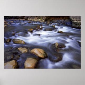 Río que fluye sobre rocas, río de la Virgen, Utah Póster
