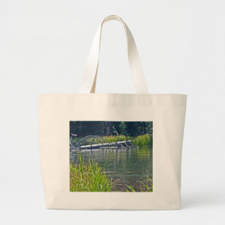 Río salvaje de Deschutes, Oregon Bolsas