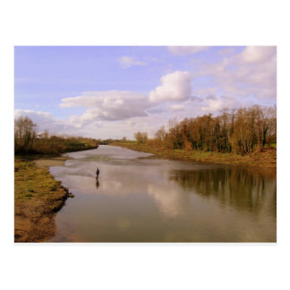 Río Shannon Postales