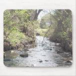 Río Shenandoah de las naturalezas Tapetes De Ratón