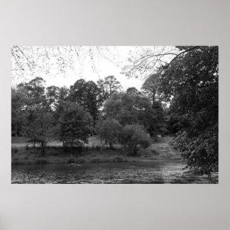 Río Taff en el parque del Bute, Cardiff - BW Póster