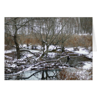 Río trasero en invierno tarjeta de felicitación