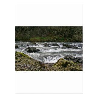 Río Whitewater de Calapooya Postal