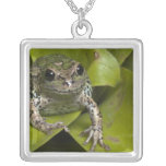 Riobamba Marsupial Frog Gastrotheca Personalized Necklace