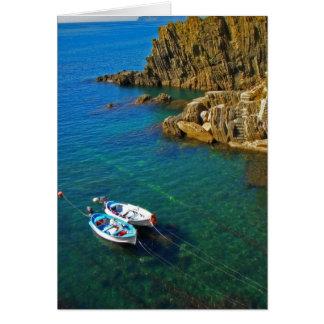 Riomaggiore harbor boats card