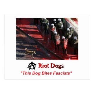 Riot Dogs Postcard