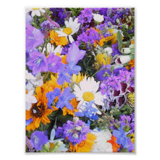 Riot of Floral Colors Poster