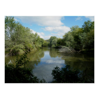 Riparian forest poster