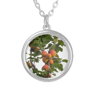 Ripe apricots hanging on the tree silver plated necklace