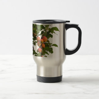 Ripe apricots hanging on the tree travel mug