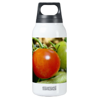 Ripe Cherry tomatoes Insulated Water Bottle
